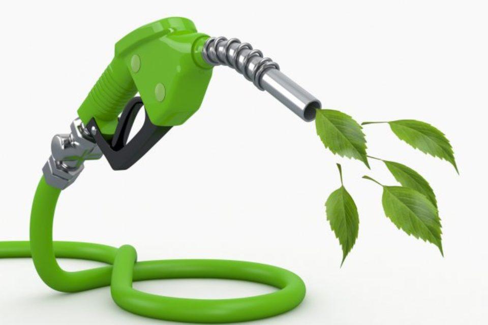 70% от европейците подкрепят конвенционалните биогорива