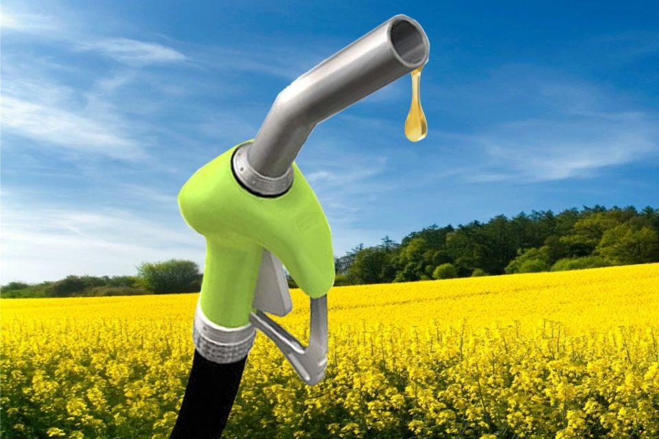 Близо 70 процента от населението в ЕС одобряват употребата на биогорива